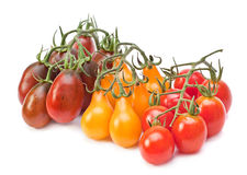 Branch varicolored cherry tomatoes Royalty Free Stock Image