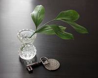 Branch in Vase, Key and Silver Coin Royalty Free Stock Photos