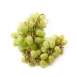 Branch of the white grape isolated Stock Images