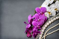 A branch of white and pink orchids. Greeting card. Beautiful composition. royalty free stock images