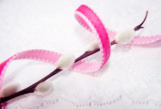 Branch of willow with vibrant ribbon Stock Photography