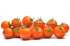 Free Branch With Cherry Tomatoes Closeup Royalty Free Stock Photo - 25521265