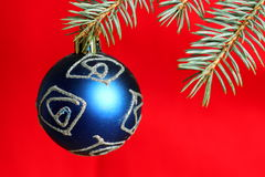 Branch of xmas tree with blue ball Royalty Free Stock Photo