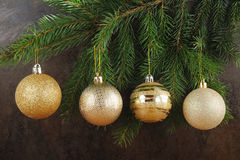 Branch of xmas tree with golden balls Royalty Free Stock Photo
