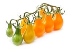 Branch yellow cherry tomatoes Stock Photo