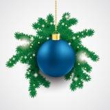Branche bleue de sapin de babiole Photos stock