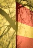 Branche d'arbre d'ombrage au plâtre de la maison Photographie stock libre de droits