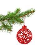 Branche d'arbre de Noël Image stock