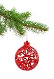 Branche d'arbre de Noël Photographie stock libre de droits