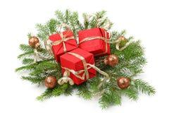 Branche d'arbre de Noël photographie stock