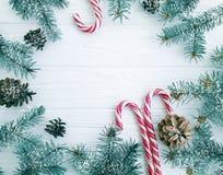 Branche d'arbre de Noël, pinecone, sucrerie décorative de fête de neige sur une carte en bois blanche de fond photos libres de droits
