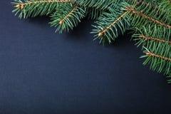 Branche d'arbre de Noël sur une table noire ou conseil pour le fond Photographie stock libre de droits