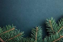 Branche d'arbre de Noël sur une table noire ou conseil pour le fond Photo libre de droits