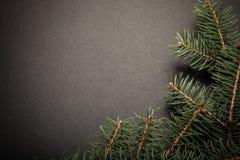 Branche d'arbre de Noël sur une table noire ou conseil pour le fond Images libres de droits