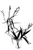 Branche d'arbre noire Images stock