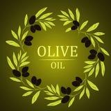 Branche d'olivier décorative de guirlande de vecteur Pour des labels, Image stock