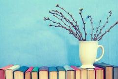 Branche de cerise avec des bourgeons sur le fond de bleu de livres Photos stock