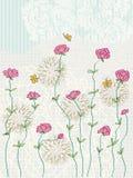 Branche de fleurs Image libre de droits