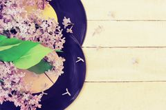 Branche de lilas, deux vieux disques vinyle Image libre de droits