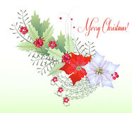 Branche de Noël avec la baie Images libres de droits