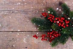 Branche de pin avec des baies de Noël images libres de droits