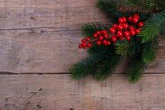 Branche de pin avec des baies de Noël photo stock