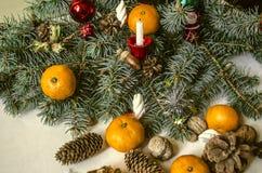 Branche de pin avec des cônes, mandarines, écrous avec la bougie Photographie stock libre de droits