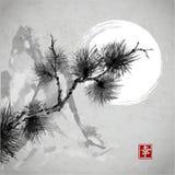 Branche de pin, montagnes et la lune Photographie stock