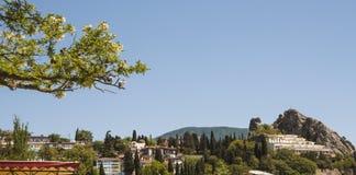 Branche de ressort d'acacia fleurissant avec les pigeons se reposants sur le fond du ciel bleu et le village dans les montagnes photographie stock