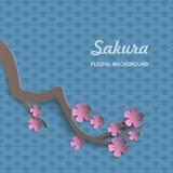 Branche de Sakura de papier avec des fleurs Cerise de floraison tapotement 3d floral Images libres de droits