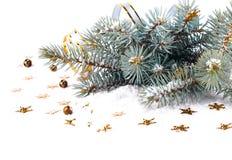 Branche de sapin de Noël avec des flammes et des étoiles d'or Photo libre de droits