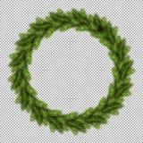 Branche de sapin de sapin de pin, brindilles à feuilles persistantes d'arbre illustration libre de droits