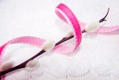 Branche de saule avec le ruban vibrant photographie stock