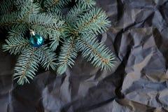 Branche del abeto del árbol de la naturaleza fotos de archivo