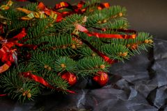 Branche del abeto del árbol de la naturaleza imagen de archivo libre de regalías