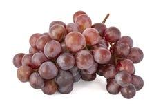 Branche des raisins rouges juteux mûrs photos libres de droits