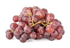 Branche des raisins rouges juteux mûrs photographie stock