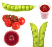 Branche des tomates images libres de droits
