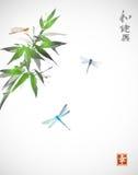Branche en bambou et trois libellules Photo libre de droits