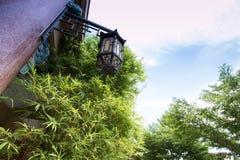 Branche en bambou et une lanterne chinoise photographie stock libre de droits
