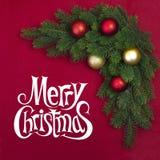 Branche faisante le coin de sapin de Noël Images libres de droits