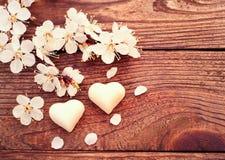 Branche fleurissante avec les fleurs sensibles blanches sur la surface en bois Photo libre de droits
