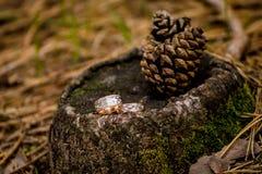 Branche fleurissante avec les fleurs sensibles blanches sur la surface en bois Déclaration de l'amour, ressort Carte de mariage,  image stock