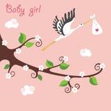 Branche fleurissante de bande dessinée mignonne Cigogne de vol avec le bébé-gir nouveau-né Image libre de droits