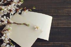Branche fleurissante de ressort et vieilles photographies vides sur le fond en bois Photo libre de droits
