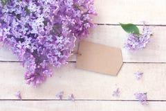 Branche lilas avec l'étiquette de papier vide Image libre de droits