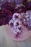 Branche pourpre de lilas dans le vase rose une fleur sensible et belle Image stock