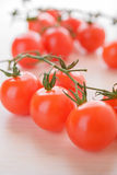 Branche of red tomatoes Royalty Free Stock Image