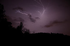 Branched lightning in forest. Widely branched lightning in a dark forest Stock Photo