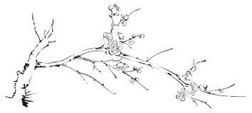 Branchement illustration stock